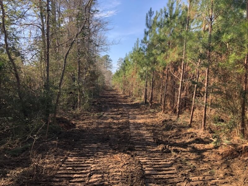 Pike County MS hunting land for sale
