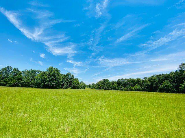 Saint-Tammany-Parish-Louisiana-land-for-sale